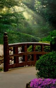 harmonious path